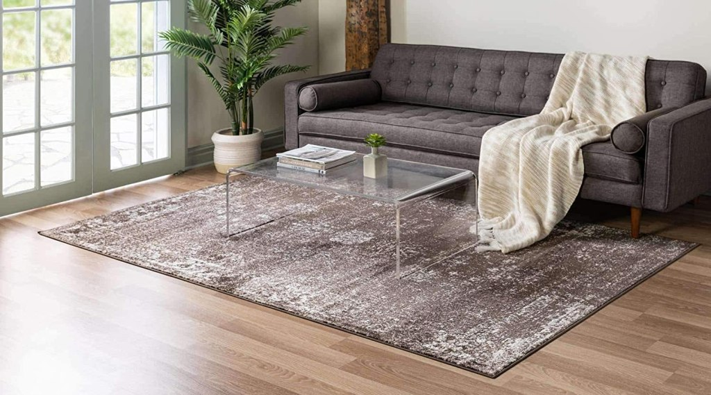 Brown Area Rug in front of couch