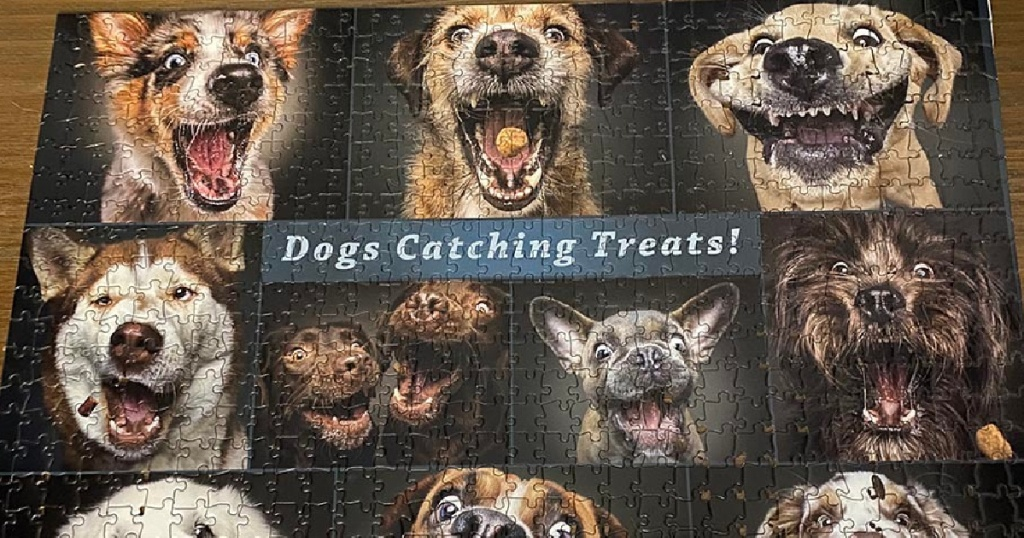 dogs catching treats jigsaw puzzle