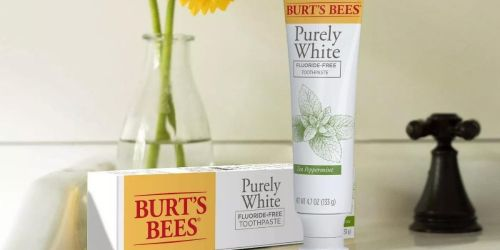 FREE Burt's Bees Toothpaste After Cash Back at Walgreens & Target