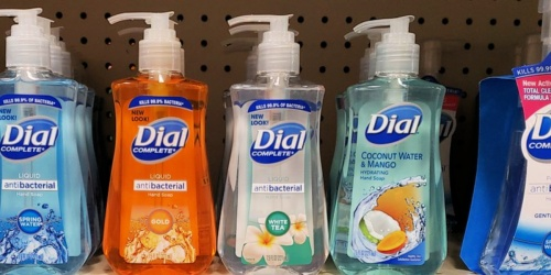 Dial Antibacterial Liquid Hand Soap 4-Pack Only $5.62 Shipped on Amazon | Just $1.41 Per Bottle!