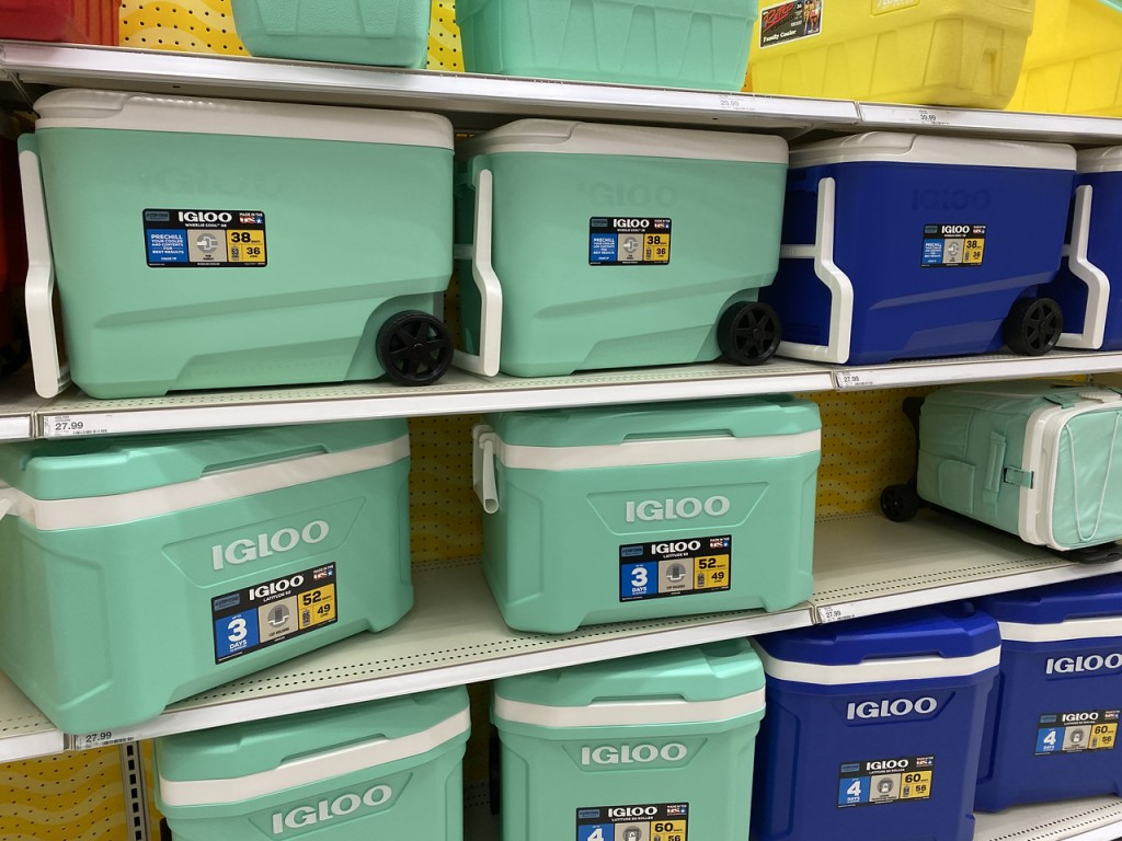 Igloo Coolers Mint in Target store