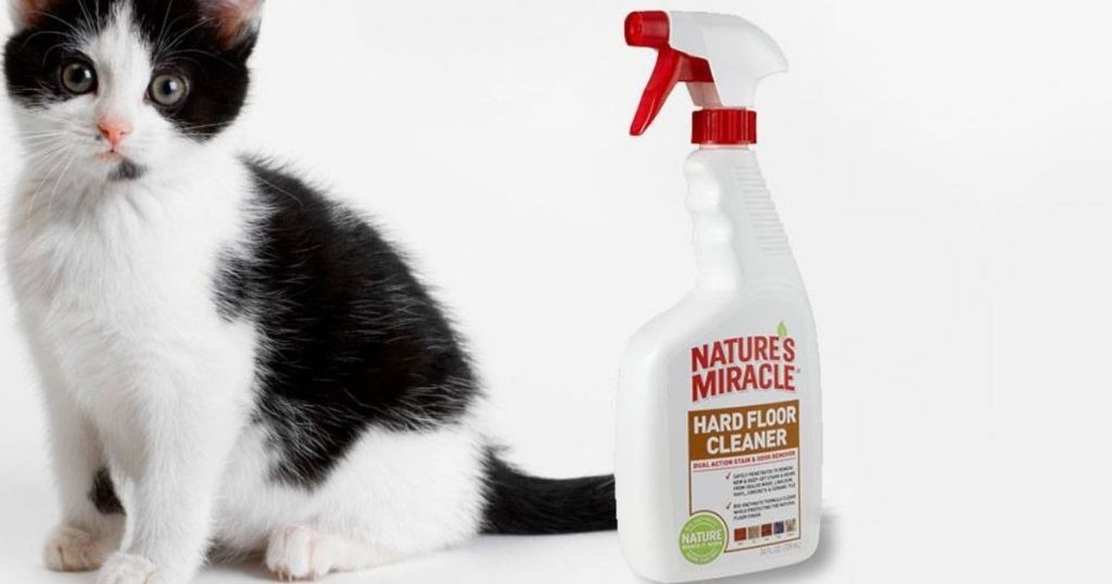 Nature's Miracle Floor Cleaner bottle next to a cat