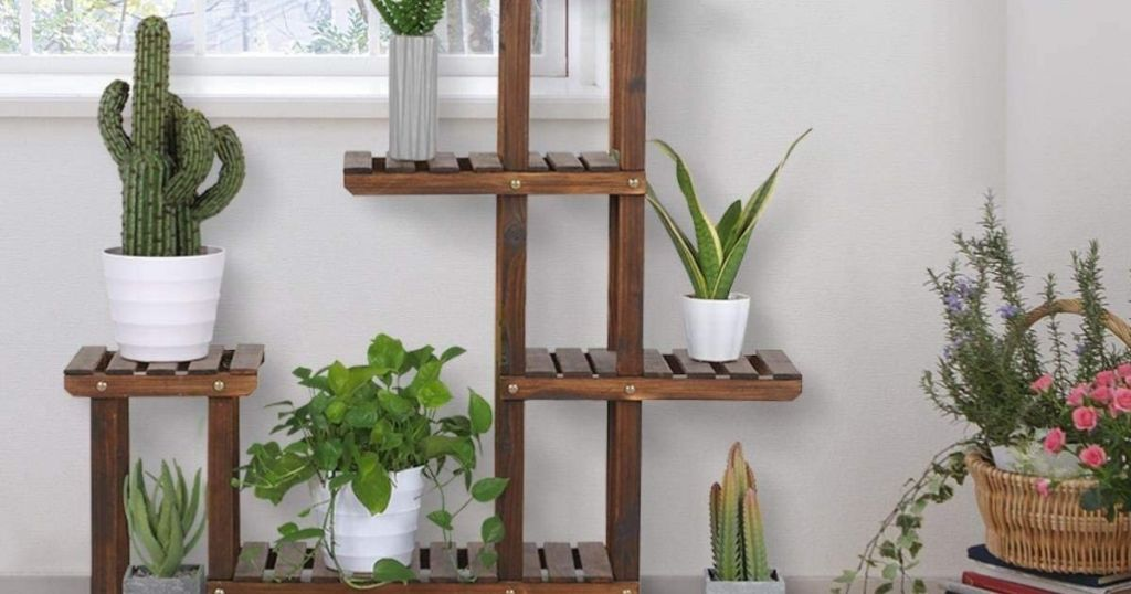 Plant Stand with plants on it