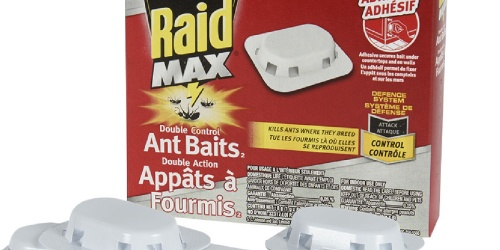 Raid Max Double Control Ant Baits 8-count Value Pack Only $6 Shipped on Amazon (Just 75¢ Each)