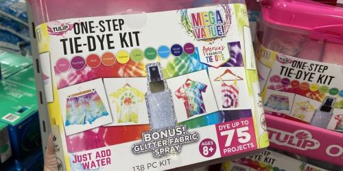 Tulip One-Step Tie-Dye 138-piece Mega Value Kit Possibly Only $12.18 at Sam's Club