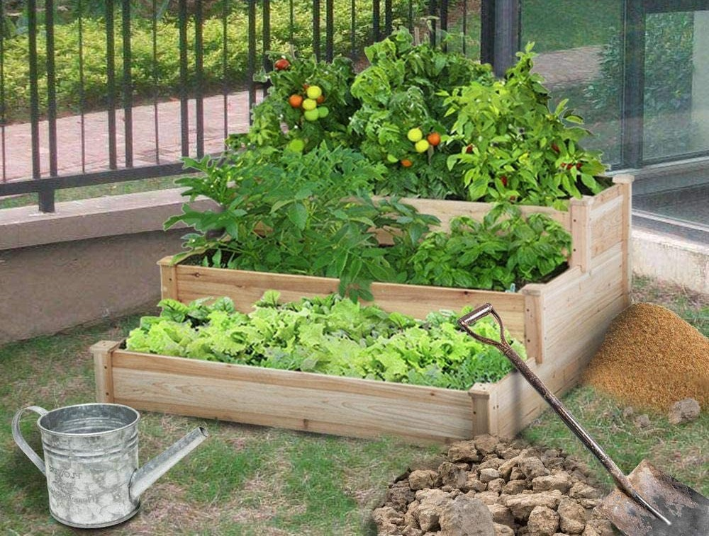 elevated garden bed with plants in it