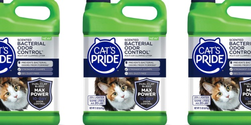 Bacterial Odor Control Cat Litter 15-Pound Container Just $3.39 Shipped on Amazon (Regularly $9)