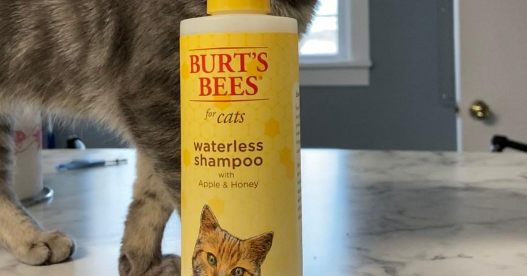burts bees brand cat shampoo