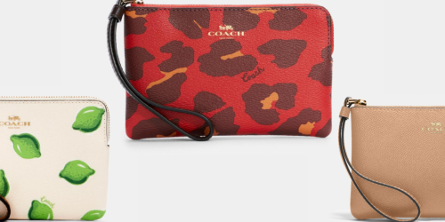 Coach Zip Wristlets from $29 Shipped (Regularly $78)