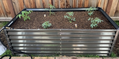 Grow Your Own Veggies & Herbs w/ Raised Garden Beds from $84.99 Shipped