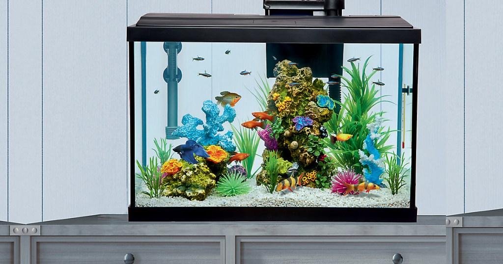 top fin aquarium