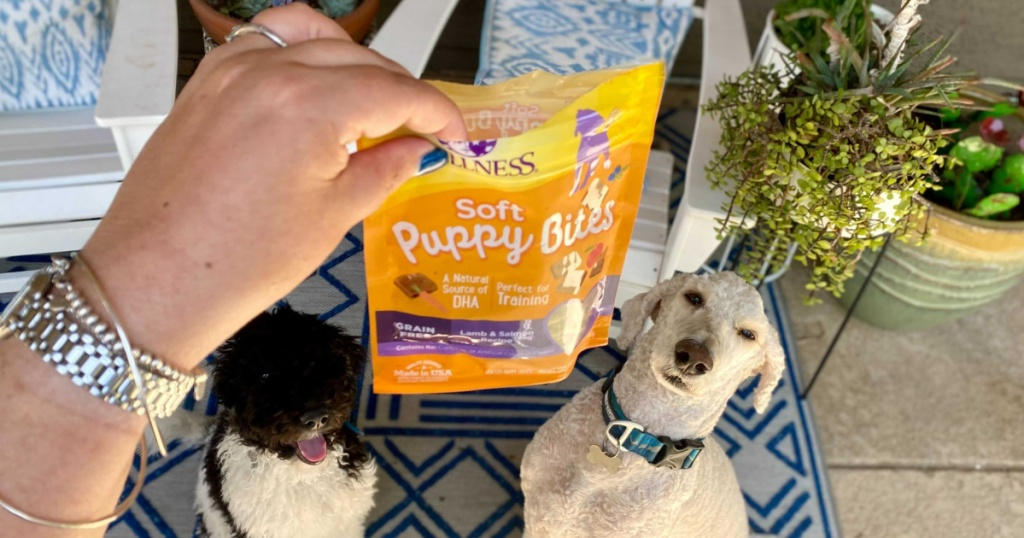 wellness soft puppy bites in hand with dogs