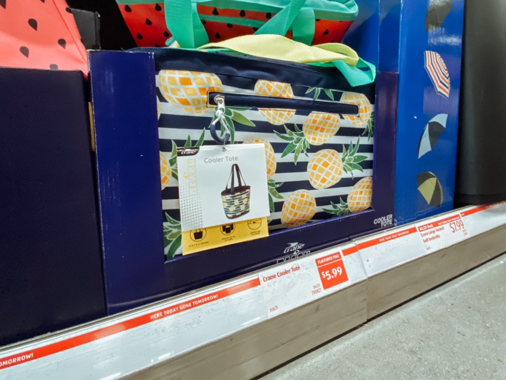 Cooler totes in-store display
