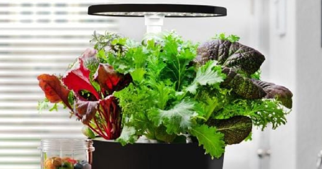 AeroGarden Harvest 360, Black with Gourmet Herbs Seed Kit