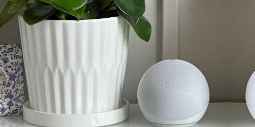 2 Amazon 4th Gen Echo Dots Just $49.98 Shipped for Prime Members | Only $24.99 Each (Regularly $50)