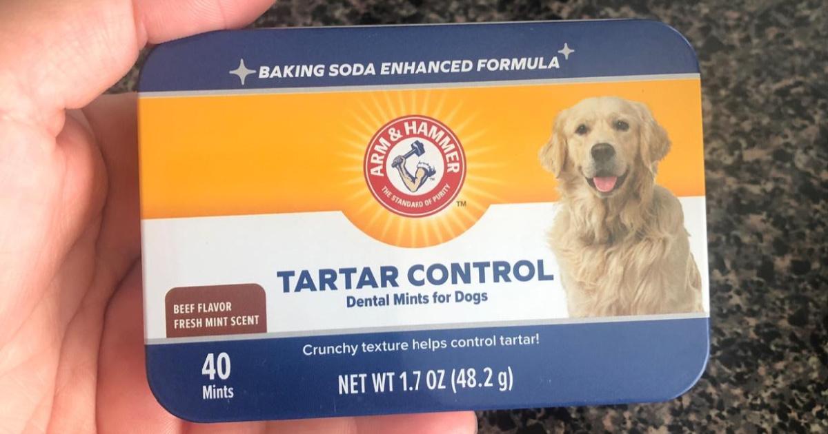 Arm & Hammer Tartar Control Dogs Mints