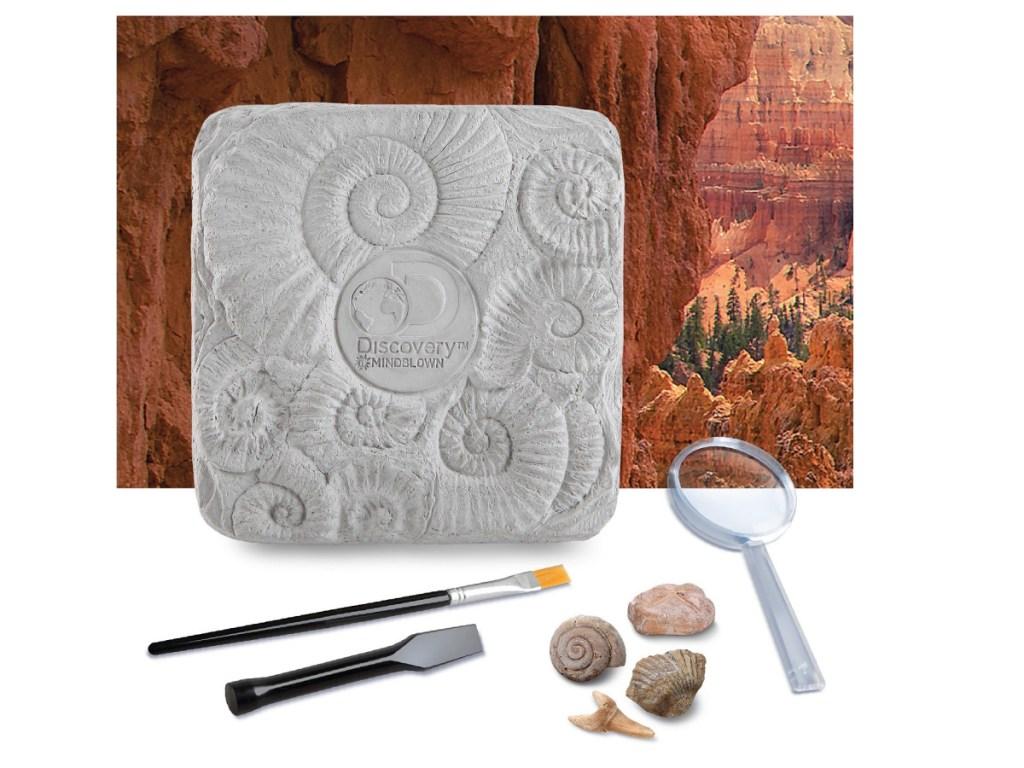 fossil digging kids kit