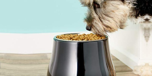 Stainless Steel Elevated Dog Bowl Only $5.49 on Amazon (Regularly $16.49)
