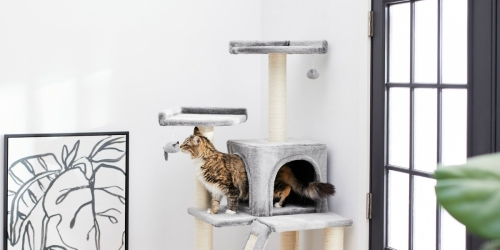 Frisco 68″ Cat Tree & Condo Only $41.99 Shipped on Chewy.com (Regularly $70)