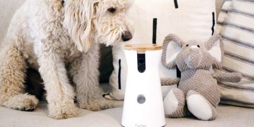 Furbo Dog Camera & Treat Dispenser Only $101 Shipped on Chewy | Lowest Price Ever