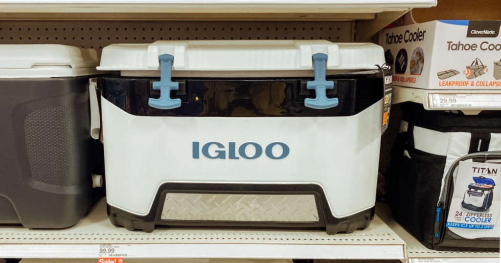 white, black and teal ice chest on shelf