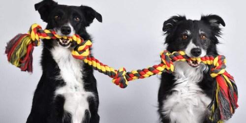 Extra-Long Dog Tug Chew Toy Only $7.95 Shipped on Amazon (Regularly $20)
