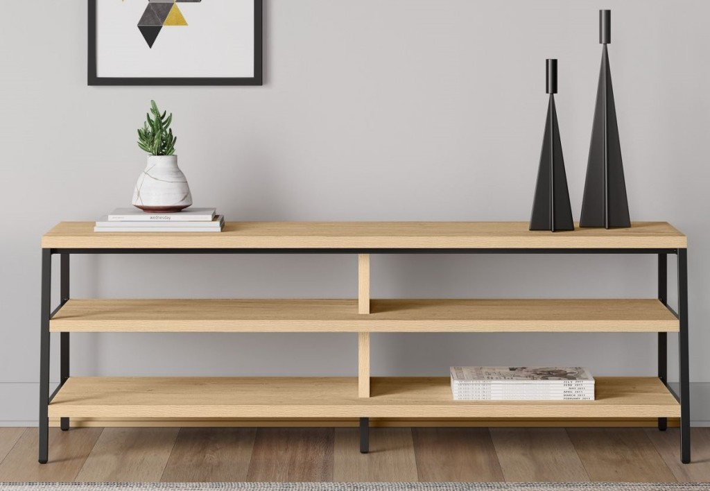 TV Stand with plant on it