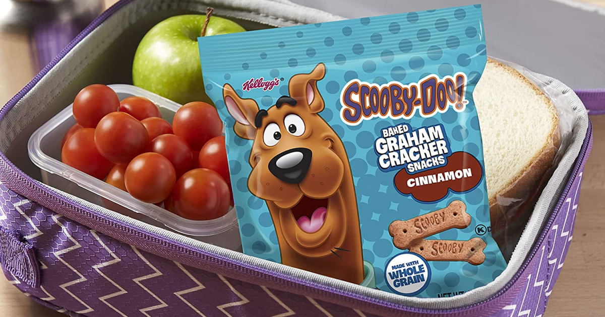 Scooby-Doo! Graham Crackers Snack Bag 40-Count Just $9.74 Shipped on Amazon (Regularly $15)
