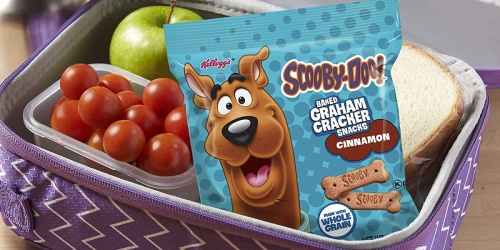 Scooby-Doo! Graham Cracker Snack Packs 40-Count Only $9.74 Shipped for Amazon Prime Members (Regularly $15)