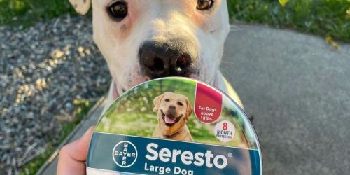 Seresto Flea + Tick Collars for Dogs & Cats from $13.75 Shipped on Amazon (Regularly $25)