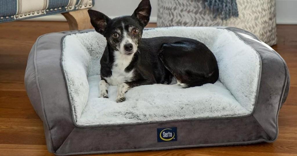 dog laying on serta memory foam pet bed