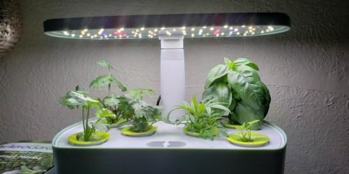 AeroGarden Harvest w/ Heirloom Salad Greens Kit Just $84.95 Shipped for Amazon Prime Members (Regularly $149)