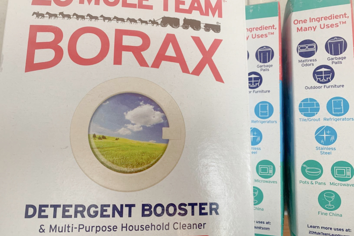 how to kill ants with box of borax cleaner