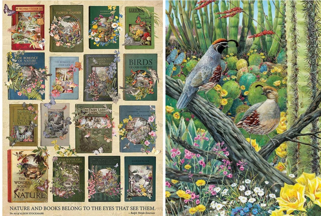 nature books and birds puzzles