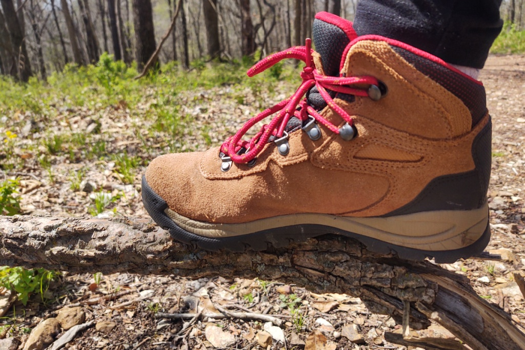 hiking boot on a tree root