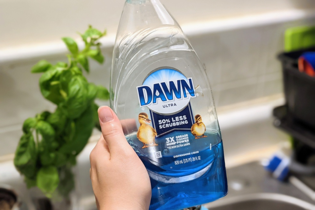 hand holding dawn dish soap in front of plant by sink
