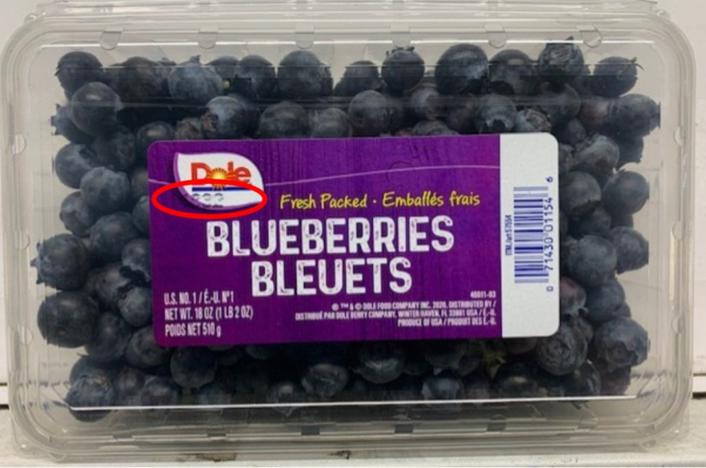 clamshell package of blueberries