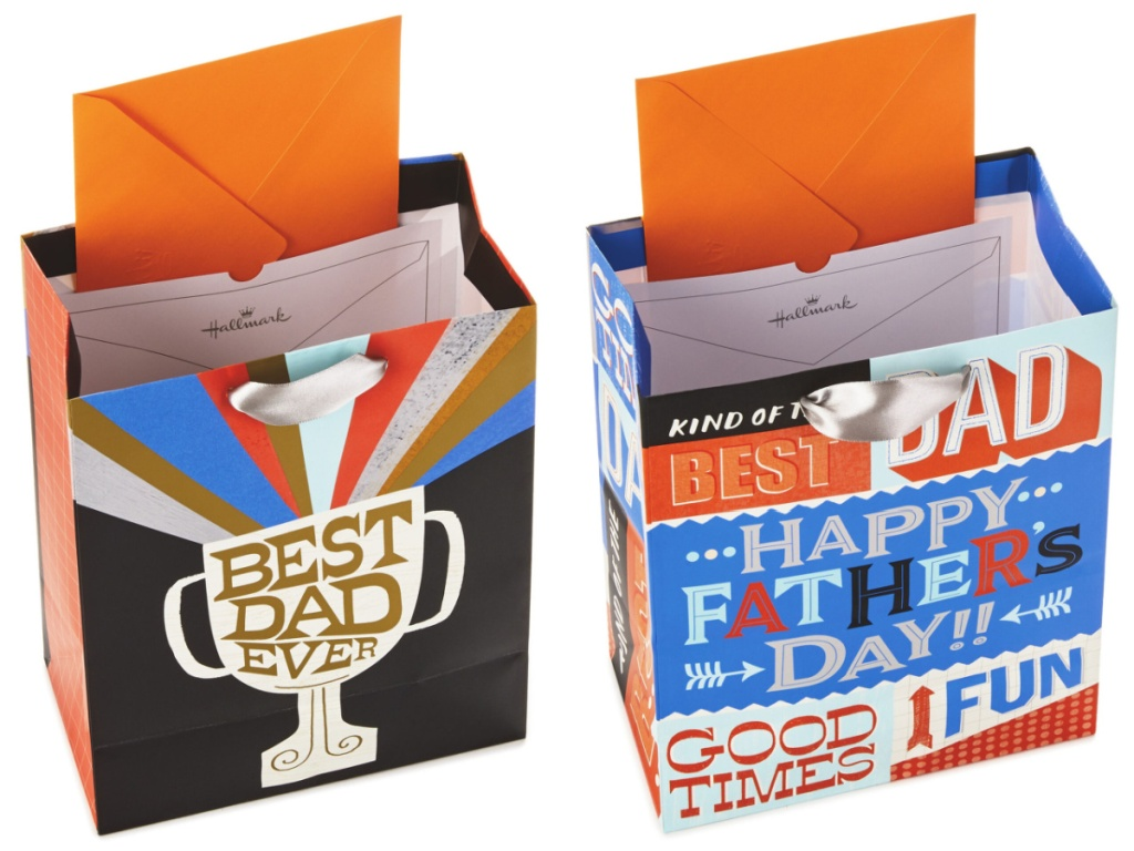 2 fathers day gift bags