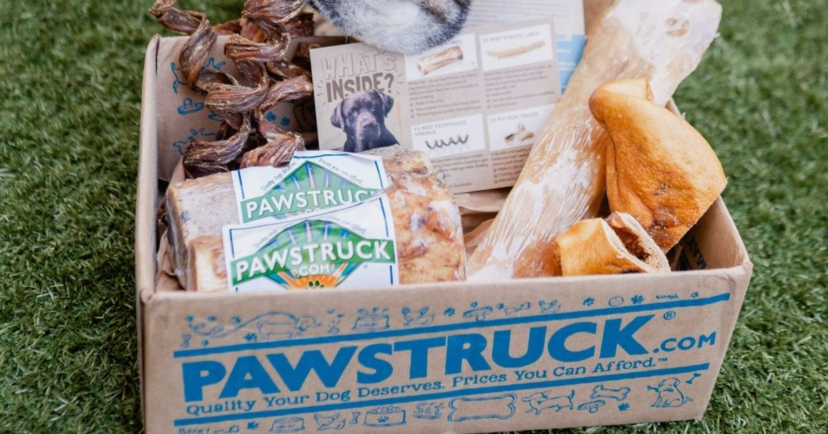 Pawstruck box filled with pet goodies