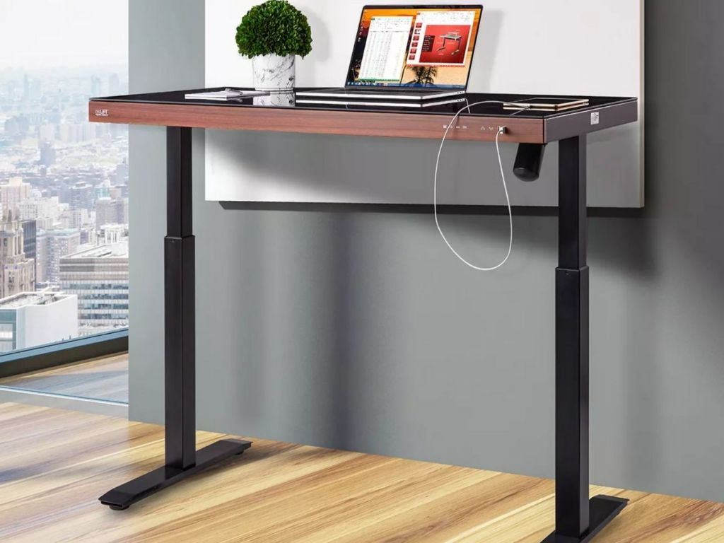standing desk with plant and laptop on it