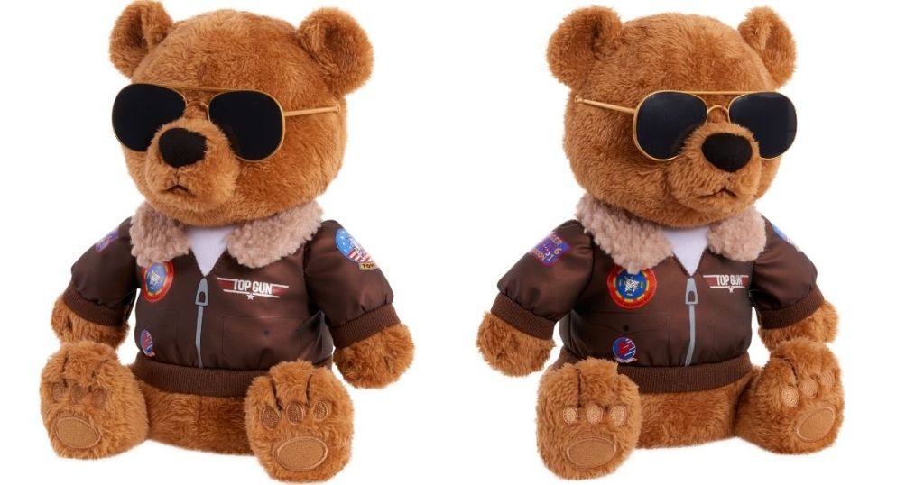 profile of teddy bear wearing aviators and aviator jacket