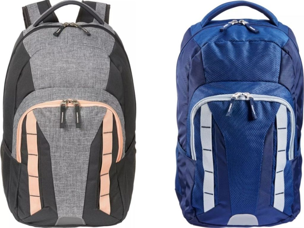 Two DSG Backpacks