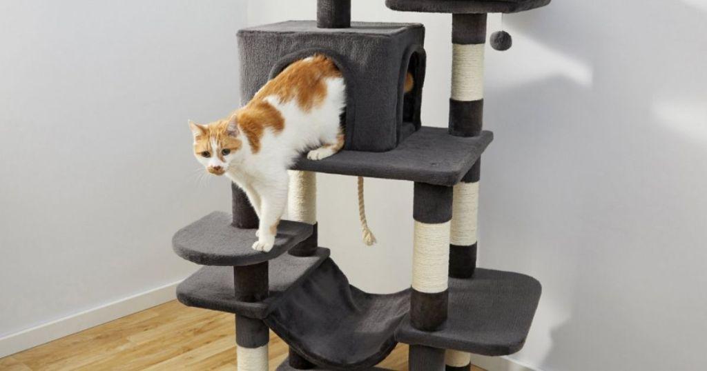 cat in a cat tower