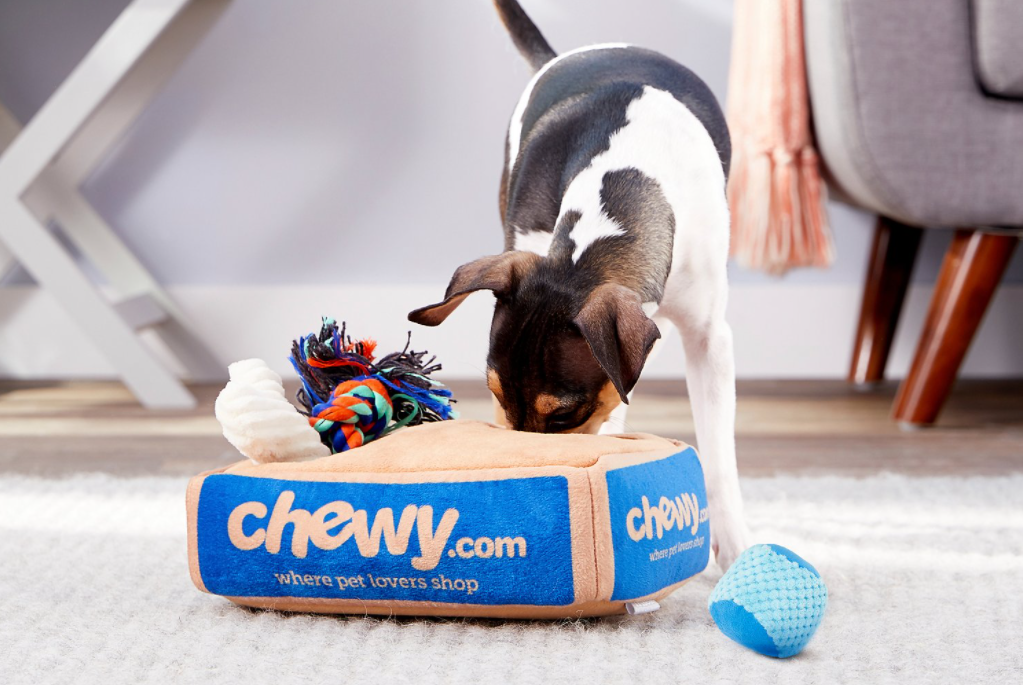 dog playing with a toy Chewy.com box