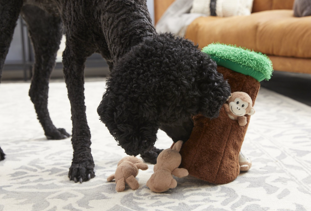 dog playing with toy tree and monkeys