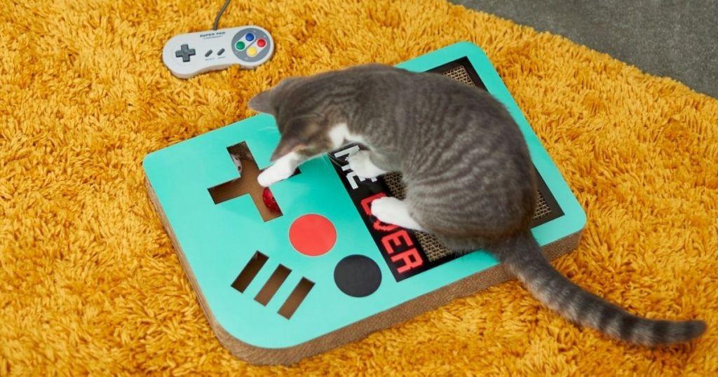 cat sitting on a cat scratcher