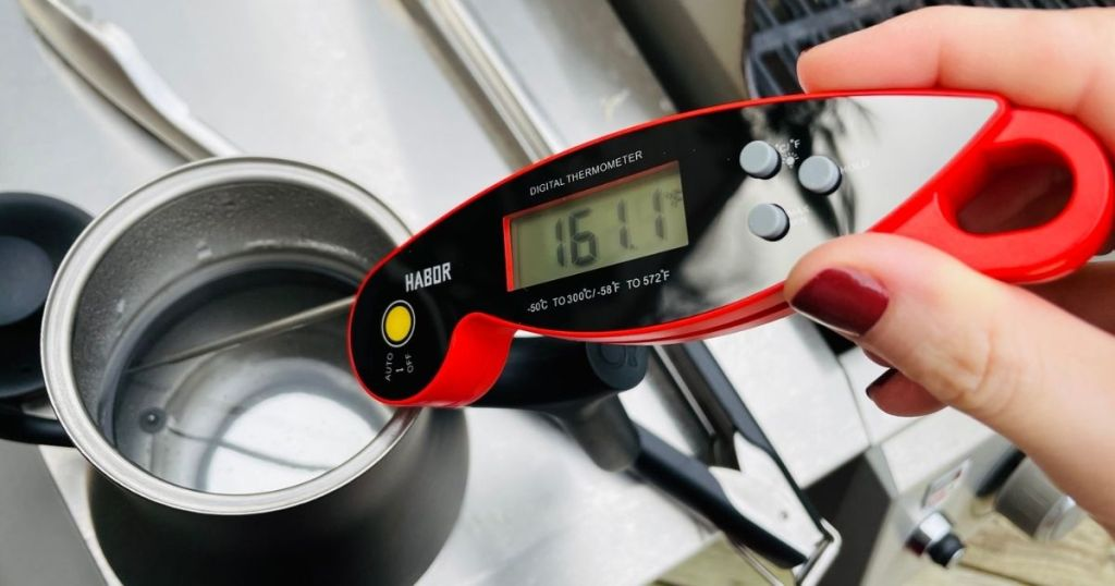 hand holding a digital thermometer in water