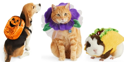 Halloween Pet Costumes Now Available on PetSmart & Petco.com | Prices from $4.99
