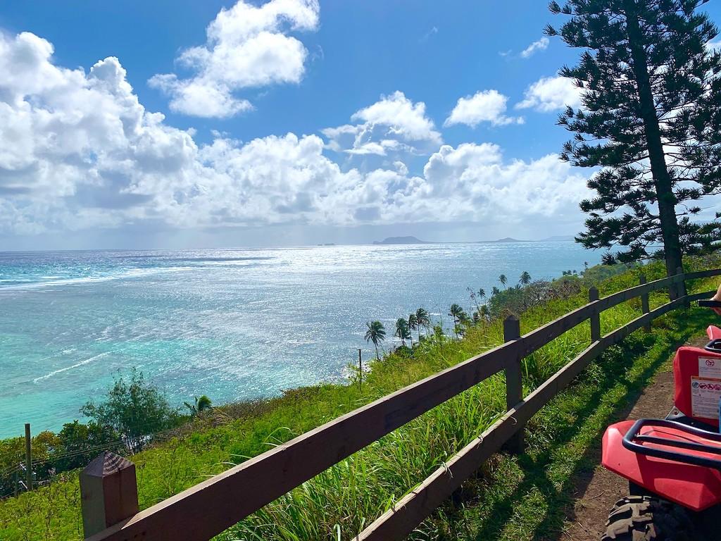 dirt road in Hawaii with ocean view