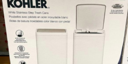 2 Kohler Stainless Steel Trash Cans Only $23.99 Shipped on Costco.com | Just $12 Each